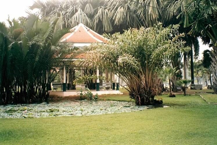 lumphini-park-bangkok-thaiet-com.jpg