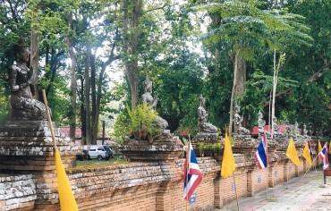 Chiang Sean