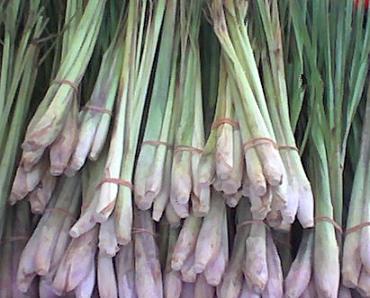 citronnelle-thaietvous-com (2)