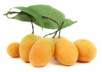 Prune-mangue