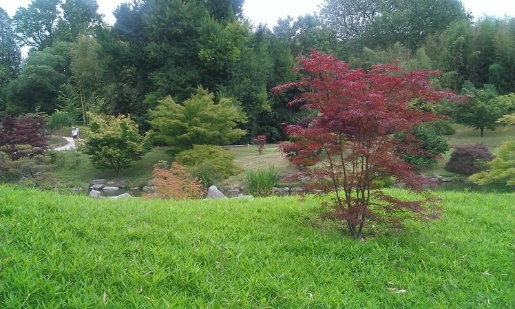 jardin-japonais-thai-et-vous-com
