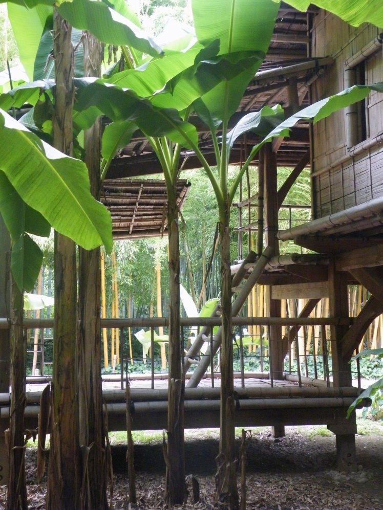 village-lao-thai-et-vous-com (1)