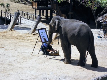 elephant-artiste-thaietvous-com
