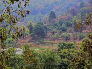 parc-national-doi-inthanon-thaietvous-com