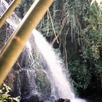 Sai Ku waterfall, ma folle aventure thaïlandaise