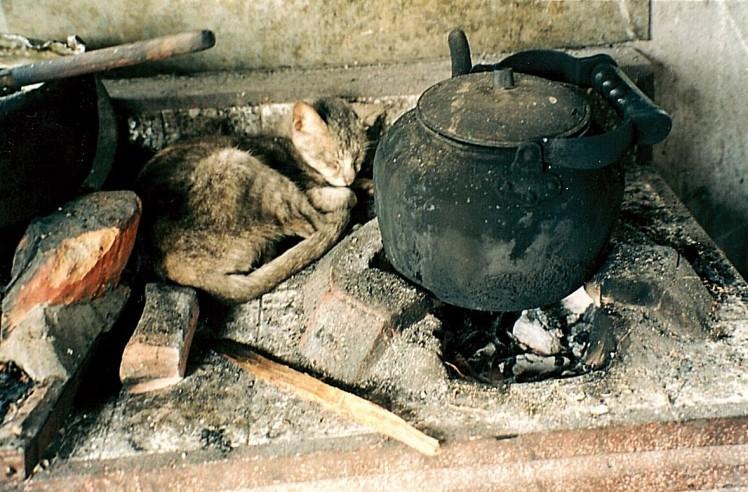 cuisine-thaietvous