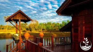 woofing-thailande-volontariat-benevolat-eco-village-ecotourisme-permaculture-tropicale-issan-issan-tourisme-vert-siam-sejour-ferme-autosuffisance-bio-suwan-bungalow-300x169